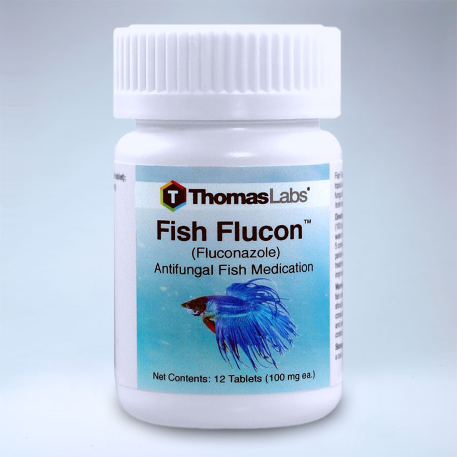 Fish flucon fluconazole 100 mg 12 tablets by thomas labs for Fish antibiotics for sale