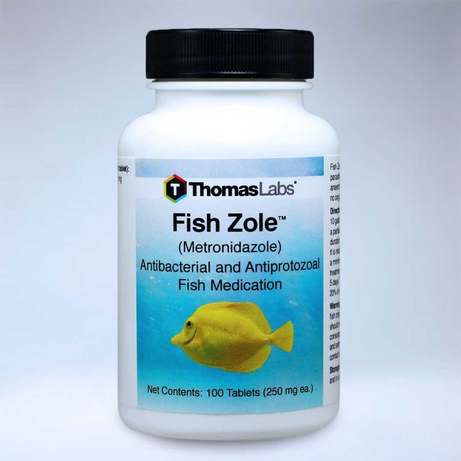 Fish zole all about fish for Fish antibiotics walmart